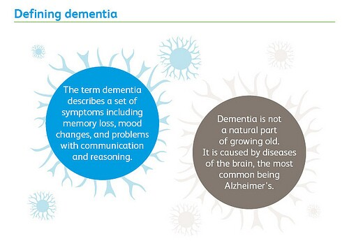 recommendations from World Alzheimer Report 2013