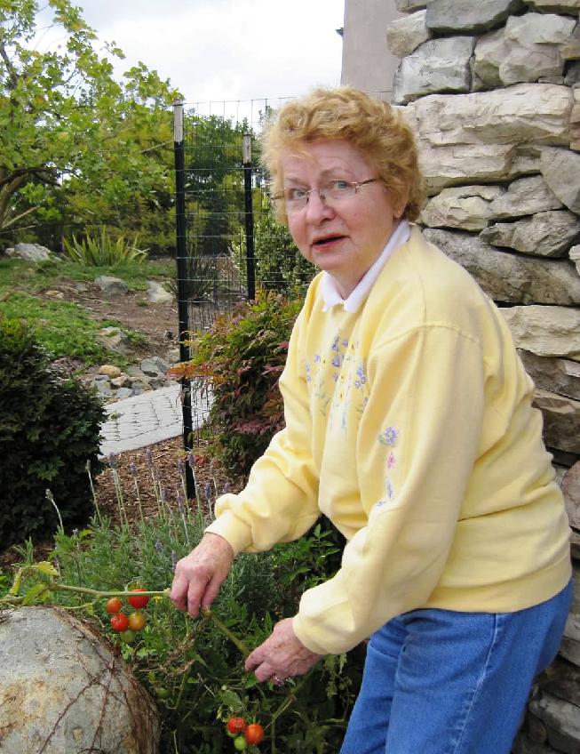 mom.tomato