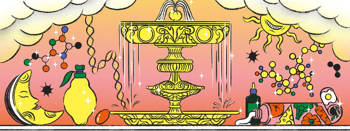 illustration_of_fountain_of_youth_with_face_creams_AntiAgingMyths_by_Cynthia_Kittler_1440X560.jpg