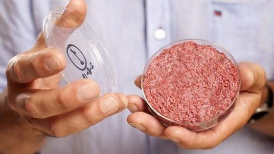 first-test-tube-burger