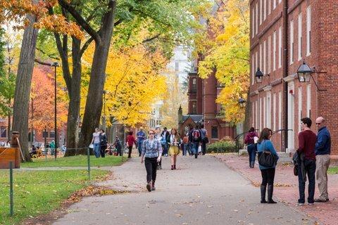 Harvard Campus in Fall