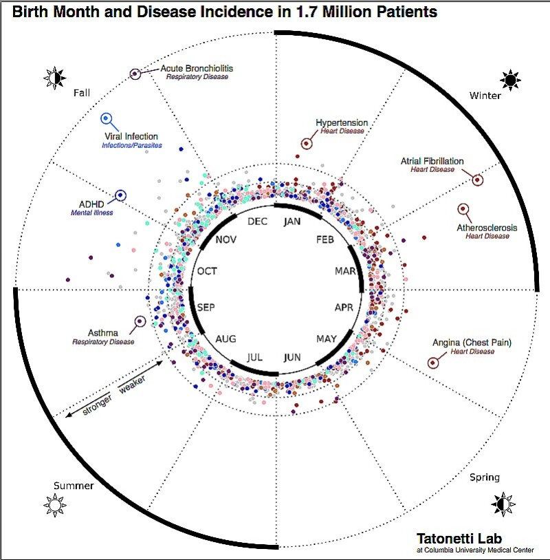 Birth month-disease wheel