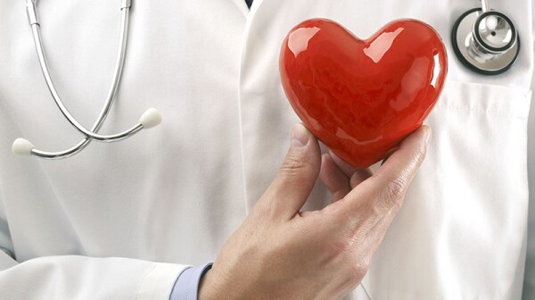 A doctor holding up a heart over their chest