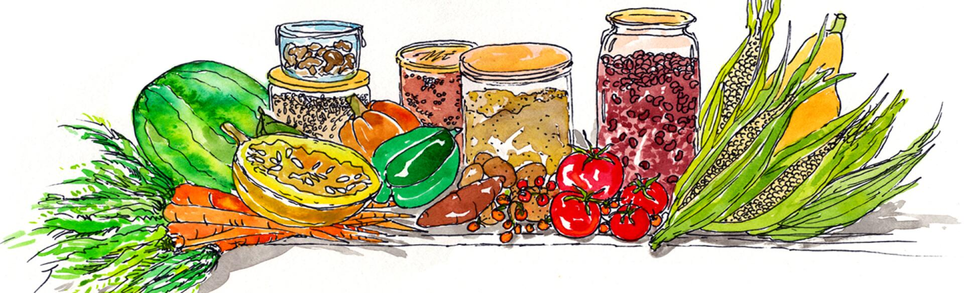 illustration of lectin free foods