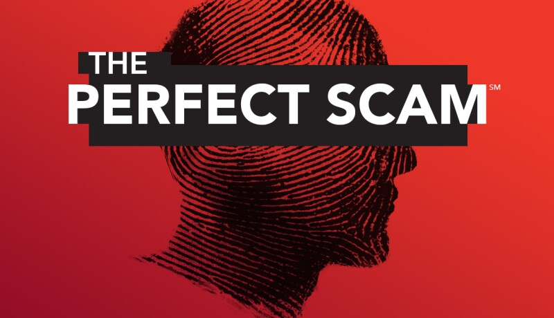 the_perfect_scam_logo