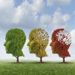 Mind tree leaves falling