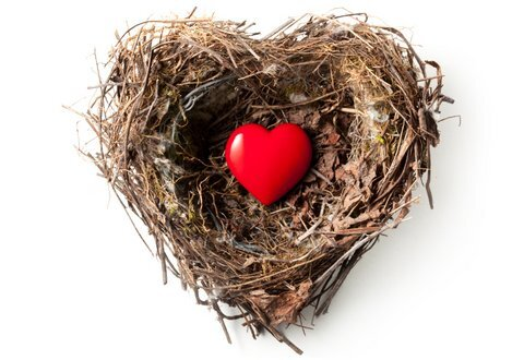 Small red heart in a bird's nest