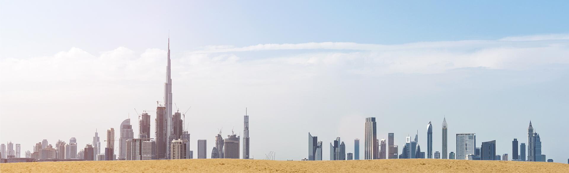 Camels walking along the dessert with the Dubai cityscape in the background
