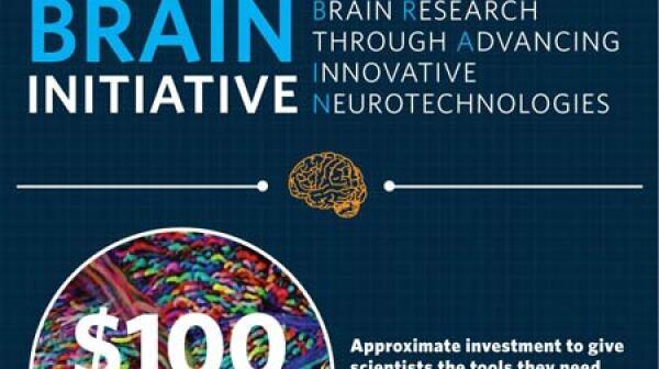 brain-initiative-detail