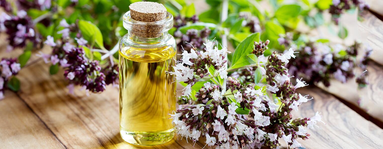 Essential Oils, AARP, the Girlfriend, Thyme Oil, Oregano oil, cinnamon oil