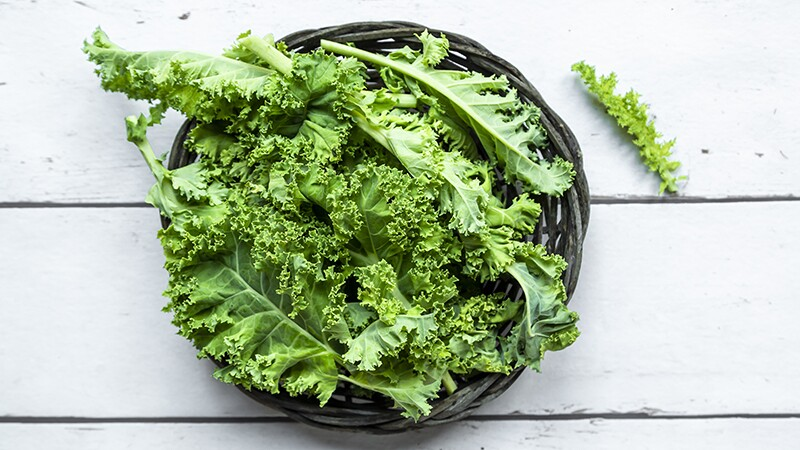A close-up view of a bowl of kale