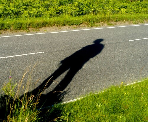 hitchhiker shadow