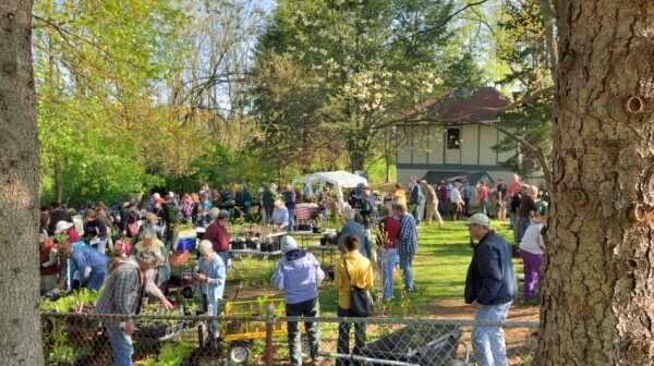 Audrey Carroll Native Plant Sale
