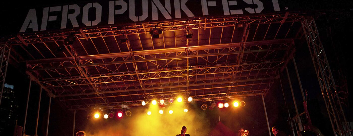 The Afro-Punk Festival at Commodore Barry Park in New York.