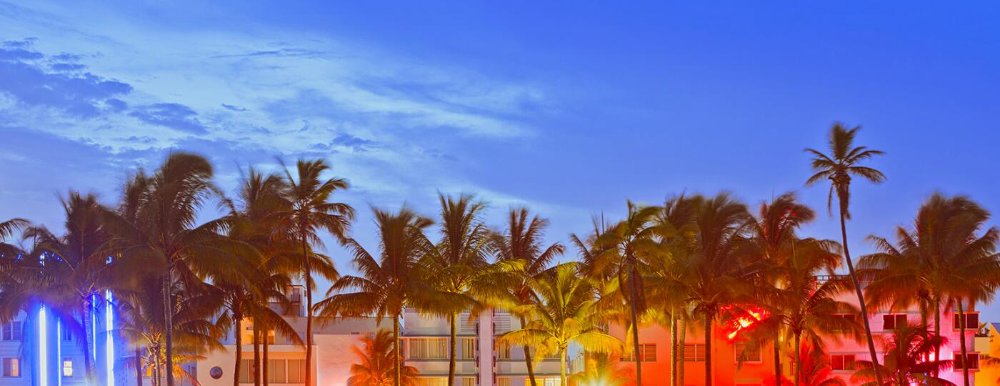 Palm trees and buildings in Miami during the sunset