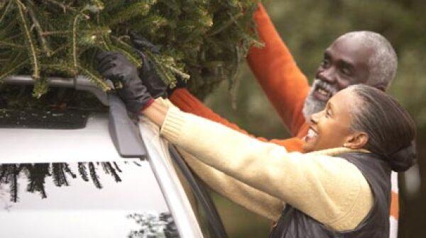 420-senior-couple-buying-perfect-christmas-tree