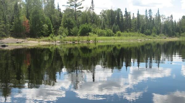 Boundary Waters, Minnesota, Lake, Trees