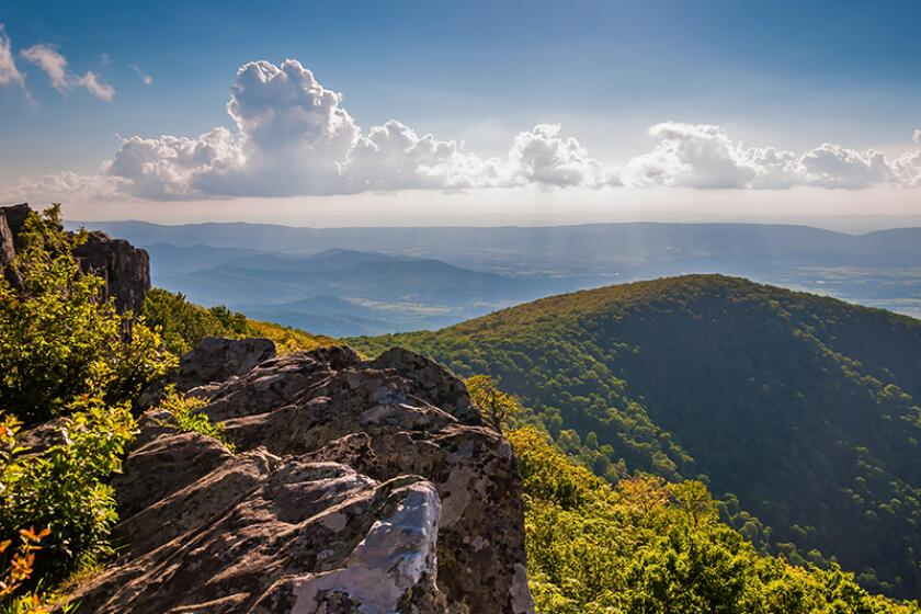 Image: Evening view from cliffs on Hawksbill Summit, in Shenandoah National Park