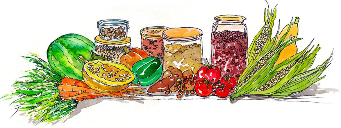 illustration of lectin free foods