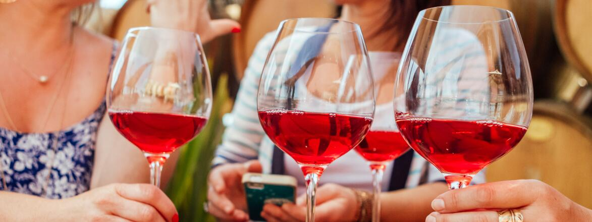 Women Talking And Drinking Rose Wine