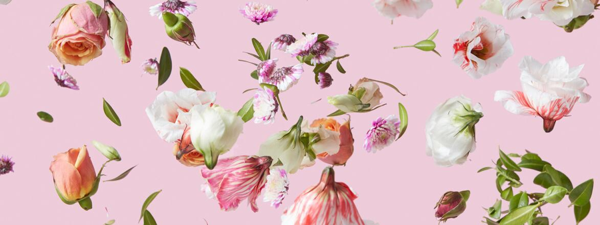 Flying Flowers Mix Background.