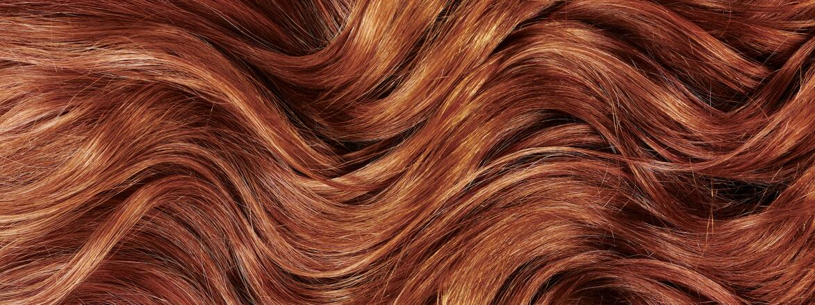 Gray_hair_that_has_been_dyed_red_TRU1463348_1540.jpg