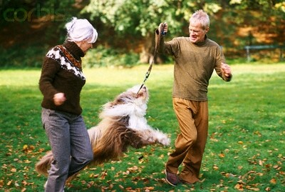 a couple playing with dog