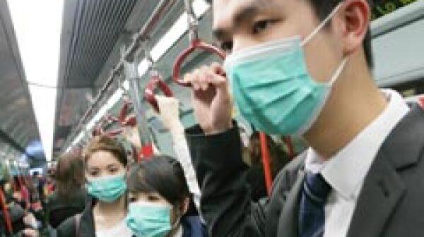 New strain of bird flu