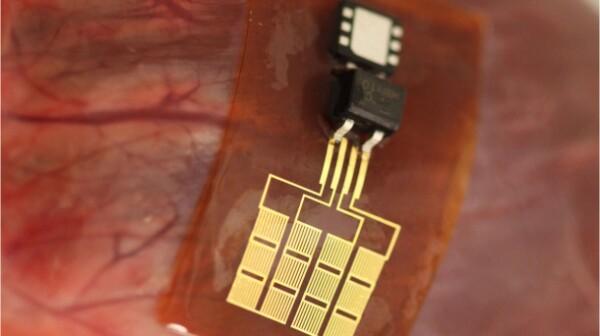 piezoelectric-nanoribbon_610x536