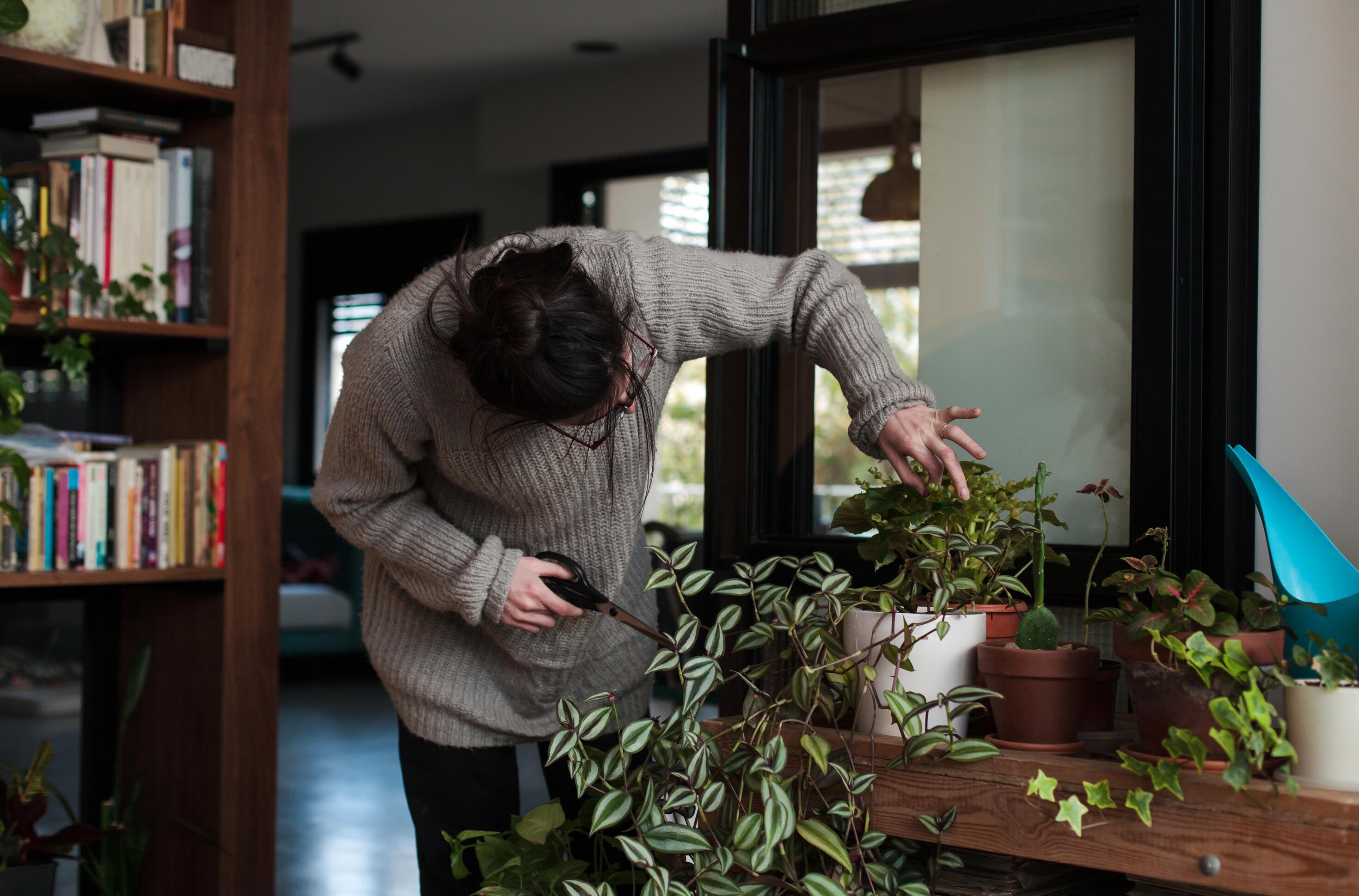 Woman's Pastime Plant Care