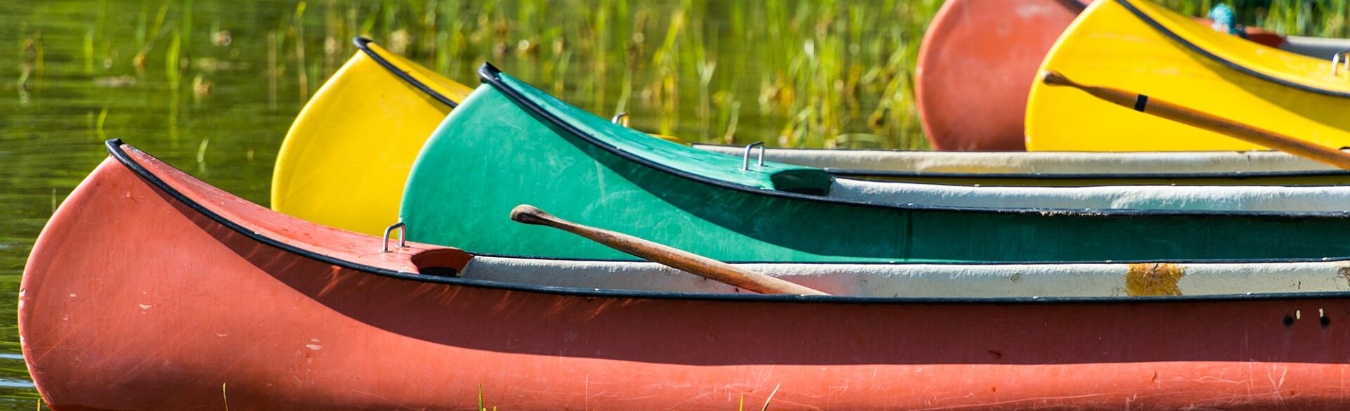 I still go back to summer camp as an adult, photo of canoes