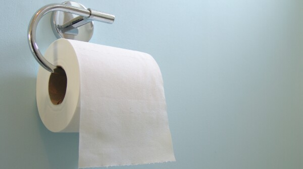 Roll of toilet paper on wall holder