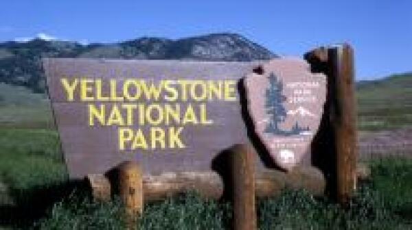 yellow-stone-sign