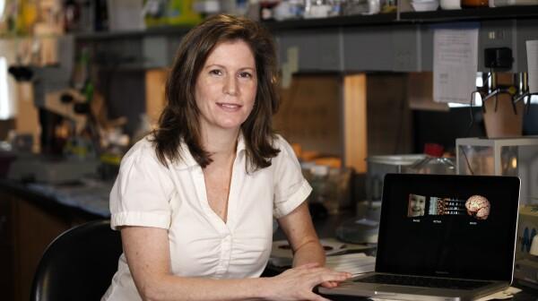 Sheila Nirenberg, 2013 MacArthur Fellow