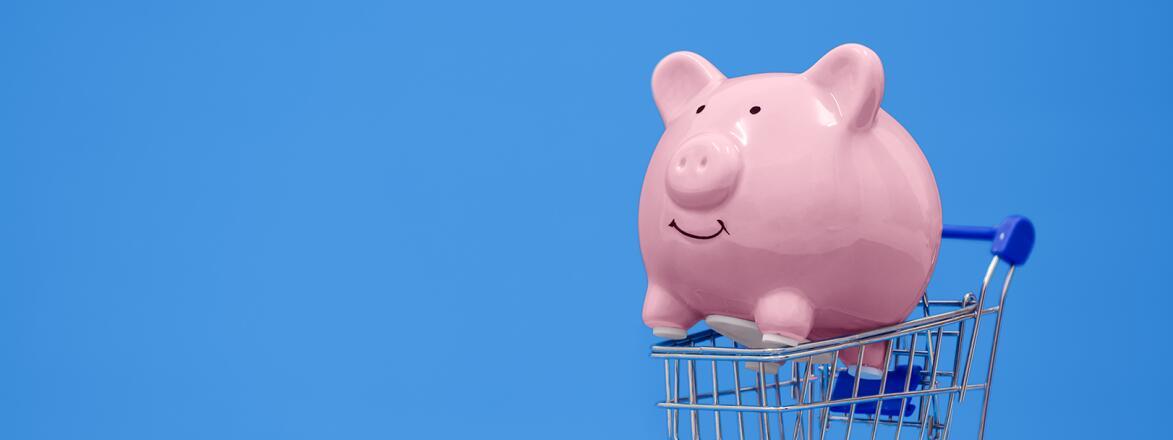 Piggy Bank Inside Shopping Cart on a blue background