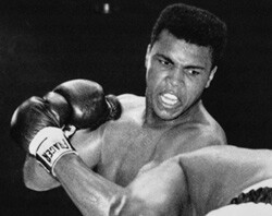 250-cassius-clay-muhammad-ali-heavyweight-champ-boxing