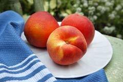 240-pesticides-fruit-vegetables-list
