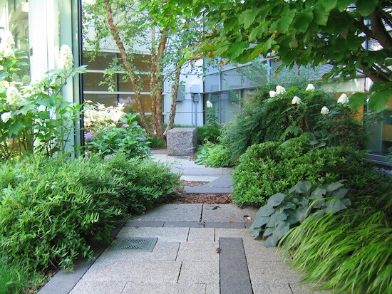 How healing gardens help patients and families