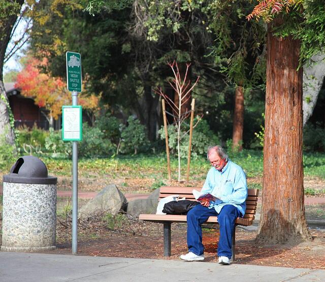 senior on park bench