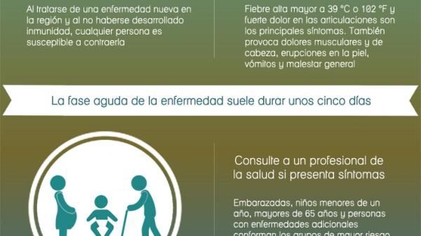 Chikungunya-inforgrafia