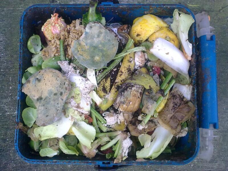 foodwaste-Nick-Saltmarsh