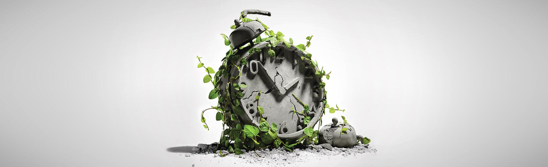 A graphic of an old clock covered in ivy.