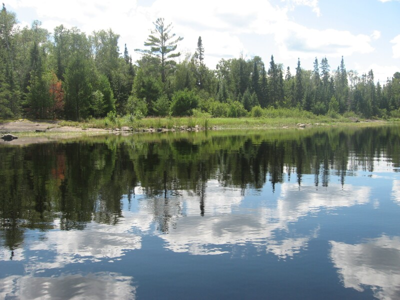 Boundary Waters, Minnesota, Lake, Trees
