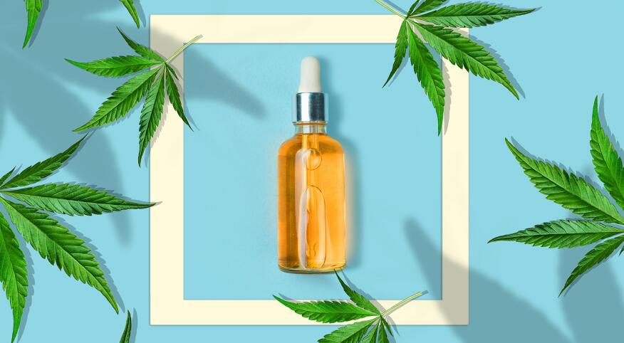 cannabis leaves on a light blue background with a bottle CBD OIL