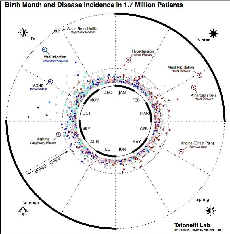 Birth month-disease wheel