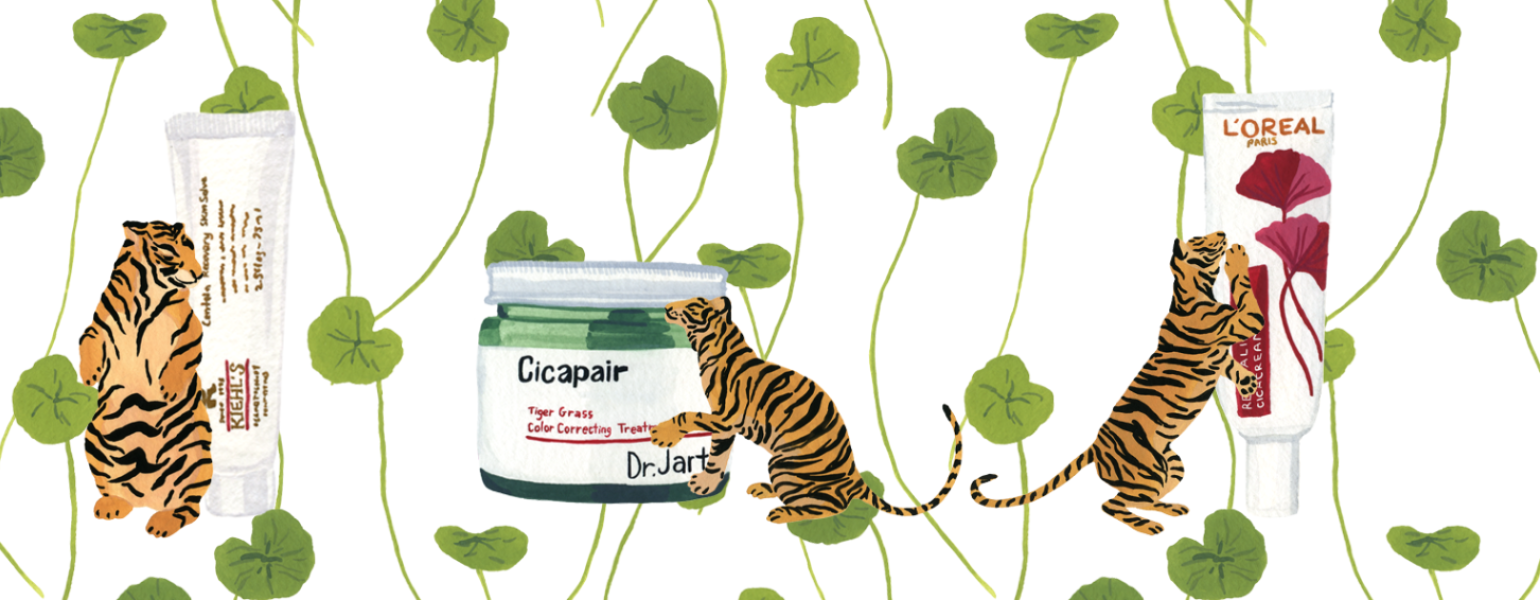 Illustration of tigers next to skin care products with tiger grass in the background