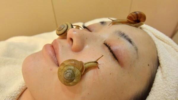 snailgetty