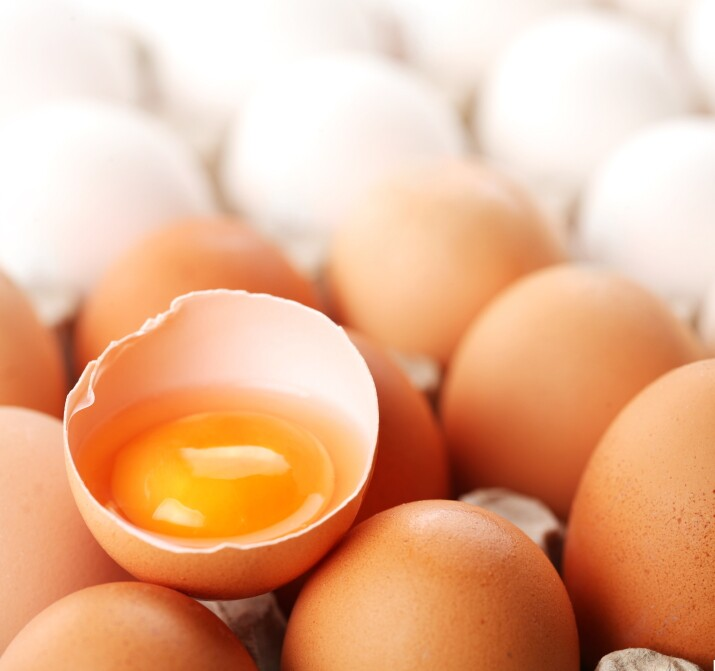 Raw egg in half-shell on top of whole eggs